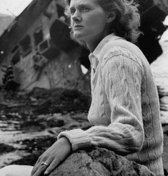a comparison of the film and novel the birds by daphne du maurrier Fun facts about daphne du maurier is also based on a daphne du maurier short story the 1952 film burton, was also based on a novel by daphne du maurier 2.