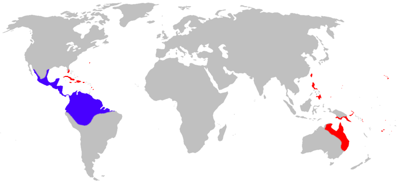 Cane Toad Distribution Blue Is Native Red Is Introduced Photo By LiquidGhoul Creative Commons ShareAlike Licence