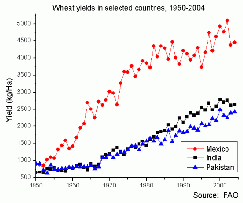 Wheat Yields